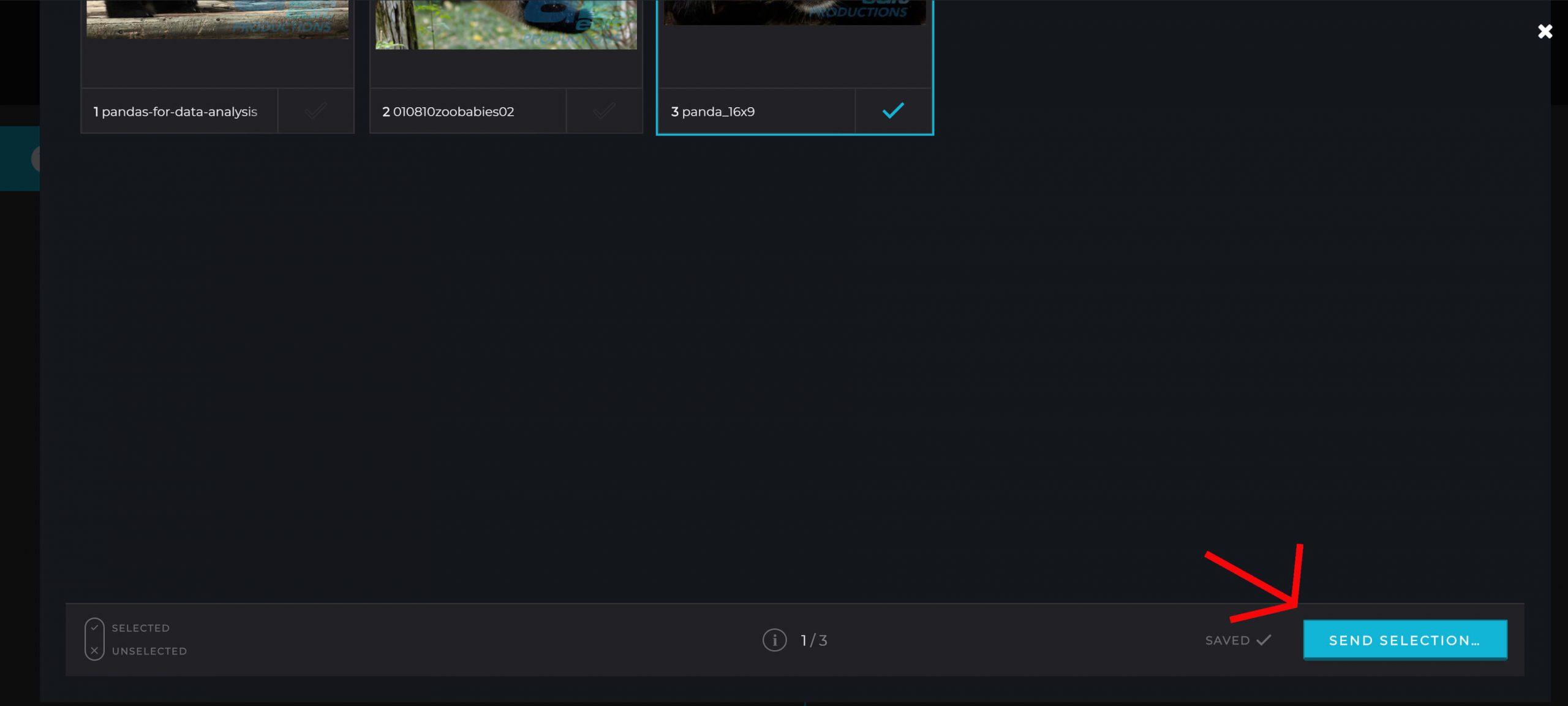 Oseeyo Web Development and Design - Client dashboard screenshot